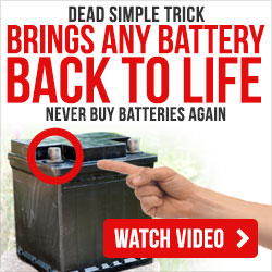 How to never pay for new batteries ever again!